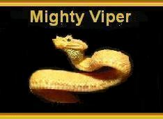 Mighty Vipers Student Promise - 39170 Bytes